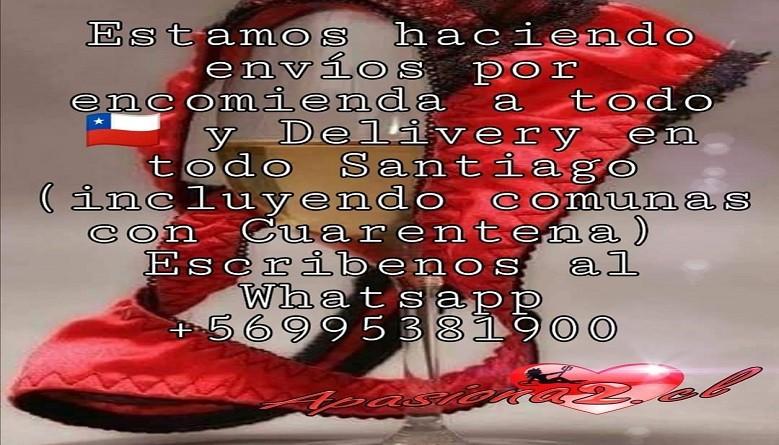 ENVIOS DELIVERY Y TAMBIEN ENVIOS POR ENCOMIENDA A TODO CHILE
