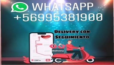 Delivery a Domicilio en Todo Santiago y Envios por Encomienda a todo Chile,  has Click Aquì